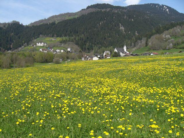 Frühling in Schluein